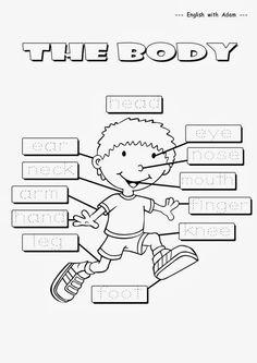 Resultado de imagen para partes del cuerpo para niños 4 años