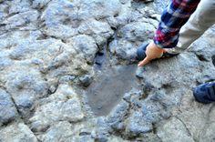 Asturie per bambini: la costa dei Dinosauri