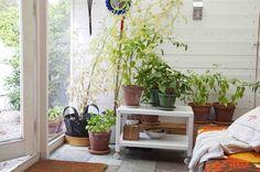 Hege Greenall-Scholtz: IKEA PS 2012. Table on wheels.