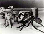 The Incredible Shrinking Man 1957  starring Grant Williams and Randy Stuart. One of my personal favorites, this film won the very first Hugo Award