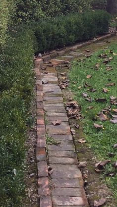 Fabulous garden walkway - make sure you visit our short article for additional good tips! Brick Path, Brick Garden, Brick Edging, Garden Edging, Garden Paths, Border Garden, Garden Cottage, Garden Bed, Diy Garden