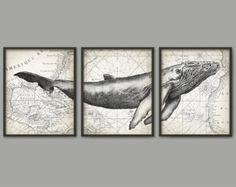 Humpback Whale Wall Art Poster Set Of 3 - Whale Art Print - Humpback Whale Poster - Humpback Whale Wall Art - Marine Biology (AB393)