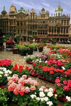 Flower Market, Brussels, Belgium