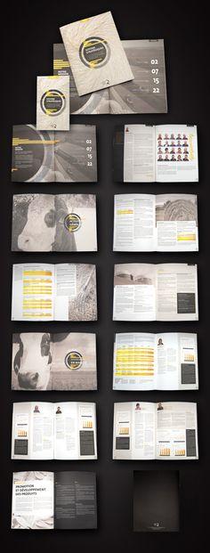 Rapport annuel FPBQ 2012 by Idée Concept, via Behance
