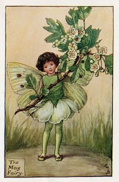 May Flower Fairy original vintage print. Printed it is by the artist/author/illustrator Cicely Mary Barker. The May Flower Fairy was one was one of Cicely Mary Barker's Spring Flower Fairies. Barker, Vintage Fairies, Cicely Mary Barker, Illustration, Fantasy Illustration, Spring Fairy, Art, Fairy Tales, Flower Fairies