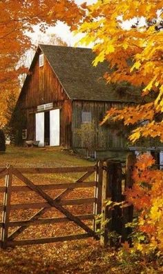 Fall leaves in brilliant colors decorate the landscape of this old barn. Country Barns, Country Life, Country Living, Country Fall, Country Roads, Country Charm, Usa Country, Farm Barn, Country Scenes