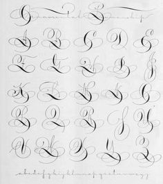 Tipografías, Fuentes / Fonts Ornamental penmanship. Good flourishing reference for pointed pen.