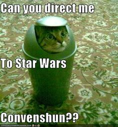Can you direct me to the star wars convention