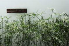 Aplique Exterior en Hierro Con acabado en Oxido. Octubre Diseño, Bogotá Colombia
