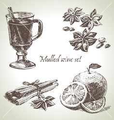 Set of mulled wine fruit and spices hand drawn il vector - by pimonova on VectorStock®