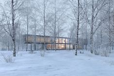 CGarchitect - Professional 3D Architectural Visualization User Community | Snow Study
