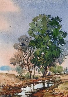 Watercolor Trees, Watercolor Landscape, Watercolor And Ink, Watercolor Paintings, Watercolours, Tree Art, Character Illustration, Art Sketches, Still Life