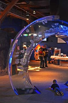 Cool looking display for jellyfish. Not so much interactive but children and adults can walk around in multiple directions to see the jellyfish.