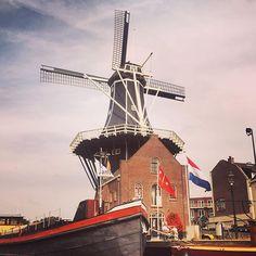 Goedemorgen Adriaan #haarlem #morning #molen #adriaan #dutch