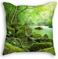 Green Forest Throw Pillow Outdoor Blanket, Throw Pillows, Prints, Green, Cushions, Decorative Pillows, Decor Pillows, Pillows, Scatter Cushions