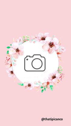 Foto E Video, Photo And Video, Rilakkuma, Templates, Floral, Cute, Inspiration, Pink Highlights, Shop Ideas