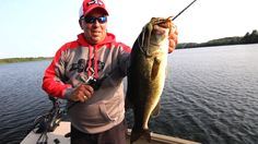 Here is a brief overview of fishing for bass on deep weedlines in Northern natural lakes.