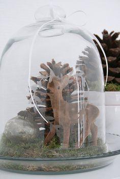 DIY | Herfst | herfst decor onder een stolp | decoratief | how to | recycle | tips | creatief