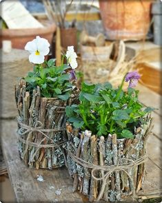 Stick with what you know! Cute idea for a pansy planter!