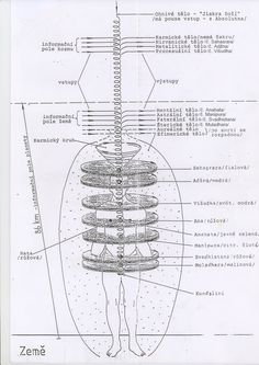 Energetická stavba človeka.pdf Tieto znalosti nám lepšie pomôžu poznať samých seba na našej Zemi atiež to, ako súvisíme senergiou kozmu. Aký je hlavný zákon Vesmíru amechanizmus jeho regulácie? …