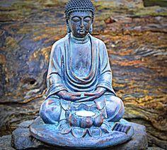 My little Buddha