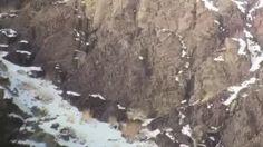 Wildlife-Lodges - YouTube