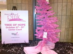 Paint the Mall Pink with Komen. October 2013
