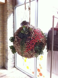 succulent & cork stopper hanging ball