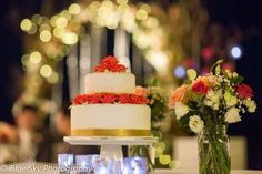 What a beautiful backdrop for a cake table