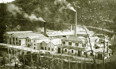 1912 - Miniere Solfuree 'Trezza-Albani' a Bellisio Solfare Pergola, Mansions, House Styles, Italia, Branding, Mansion Houses, Outdoor Pergola, Villas, Fancy Houses