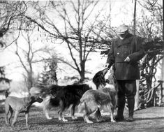 Albert Payson Terhune with some of his collies and Chips his terrier