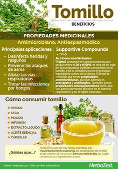 Natural Detox, Natural Healing, Natural Health Remedies, Herbal Remedies, Herbs For Health, Health And Wellness, Healthy Drinks, Healthy Tips, Healing Herbs