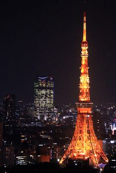Main Observatory - Tokyo Tower (東京タワー 大展望台)                                                                                                                                                                                 もっと見る