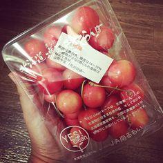 The are huge!! . 大粒の宝石\(o)/ ありがとうございます . #Hokkaido #mashike #rumoi #cherries #北海道 #増毛 #さくらんぼ #フルーツ大好き