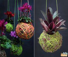 Uma ideia oriental para vocês: jardim suspenso com kokedamas (bola de solo coberta com musgo, com uma planta ornamental).