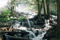 Water spills over rocks and logs after cascading over Bridal Veil Falls. Near Vancouver, British Columbia, Canada Hiking Places, Hiking Trips, Queen Elizabeth Park, Autumn Park, Picnic Area, Staycation, British Columbia, Veil, Vancouver
