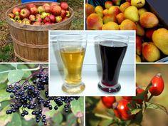 Malaga, Food And Drink, Beer, Drinks, Tableware, Glass, Syrup, Root Beer, Ale