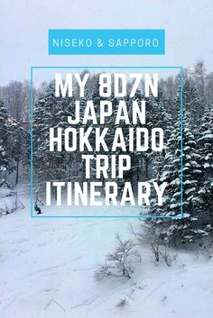 My 8D7N Japan Hokkaido Trip Itinerary - Ski at Niseko and Free & Easy at Sapporo