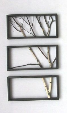 branches in frames--bringing the outdoors in
