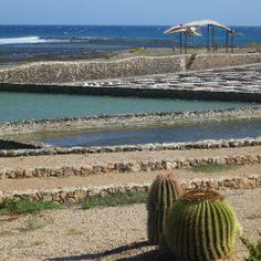 Salt Museum, Caleta de Fuste, Fuertaventura