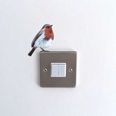 Items similar to Secret Fairy Door Wall Sticker removable mural decal on Etsy Mural Wall Art, Wall Art Decor, Vinyl Wall Stickers, Decals, Mini Canvas, Do It Yourself Home, Bird Feathers, Decoration, Bull Terrier