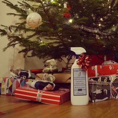 Buon Natale da #SmacchiaBile