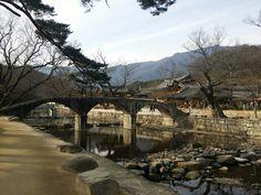 삼성반월교