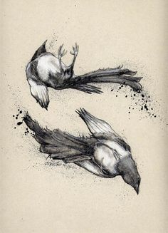Rose Sanderson - Portfolio - Drawings and Etchings