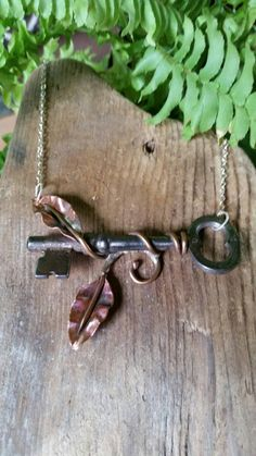 Check out this item in my Etsy shop https://www.etsy.com/listing/249769693/climbing-vine-skeleton-key-necklace