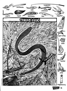 Hidden Pictures Printables, Hidden Picture Puzzles, Hidden Images, Hidden Objects, Coloring Pages, Activities For Kids, Teaching, Teaching Supplies, Challenges