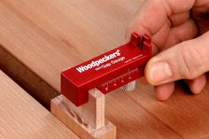 https://www.google.nl/search?q=Woodpeckers  Tool Angle