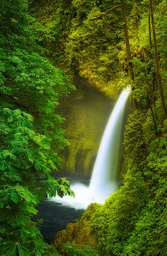 Metlako - Eagle Creek, Oregon.   ♥♥