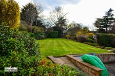 Residential garden maintenance visit in East Croydon. Great to see garden regrowing following careful winter pruning, lawn feeding and general garden improvement work we have done on-site. Grass Barbers - Unusually good residential and commercial garden maintenance services. www.grassbarbers.co.uk