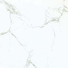 Staturio Silver Marble Porcleain Tile M60P113B (1080×1080) Calacatta, Carrara, Tile, Marble, Palette, Architecture, Outdoor, Arquitetura, Outdoors